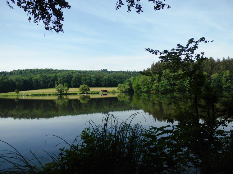 Der Stausee Oberilzmühle Bayerischer Wald