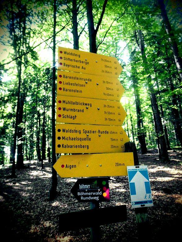 Bärenstein - Wanderrouten Böhmerwald