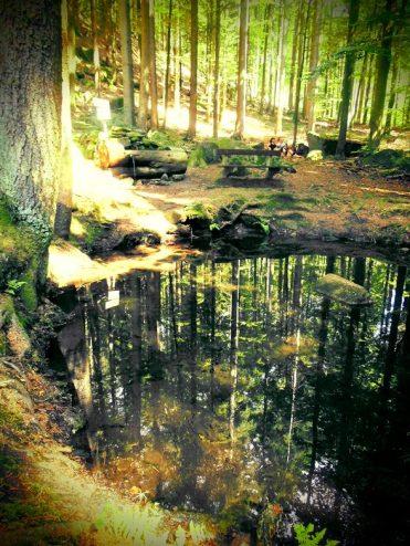 Kleine Quelle am Bärenstein