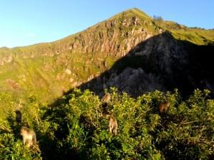 trekking batur2