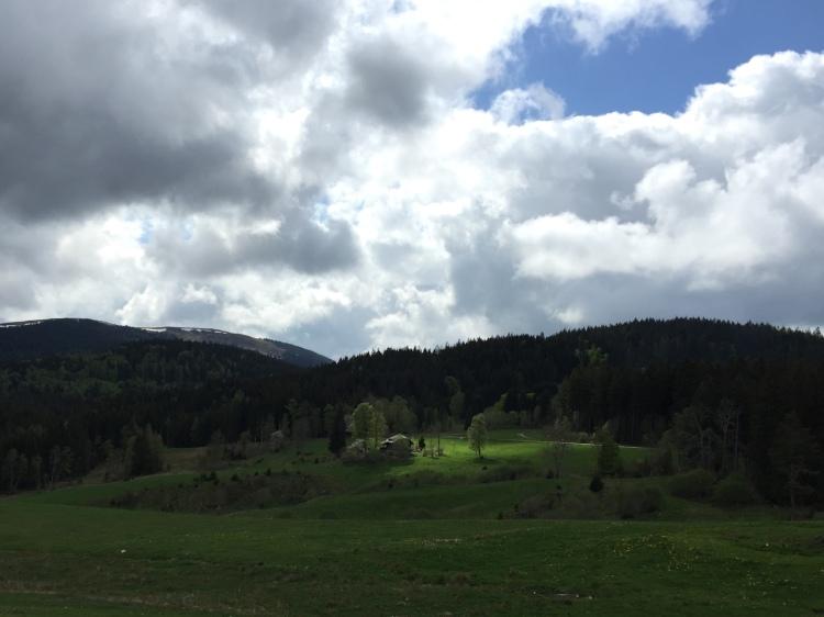Blick auf den Feldberg, Schwarzwald