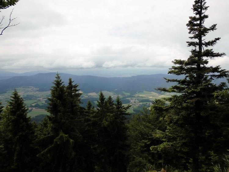 Aussicht vom kleinen Riedelstein: Bayerischer Wald