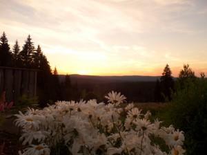 Sonnenuntergang an der Dreisesselalm