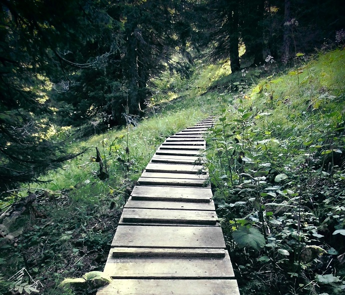 Holzsteg im Ammergebirge
