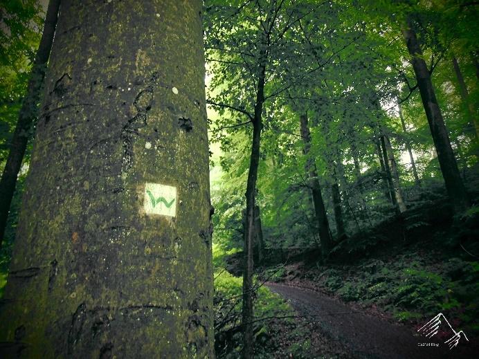 Der Westerwaldsteig