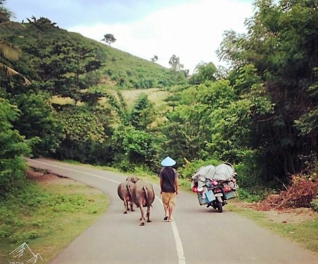 Verkehr auf Lombok in Indonesien