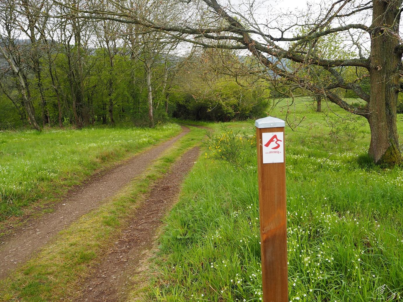 Ahrsteig Etappe 5 - Wandersymbol