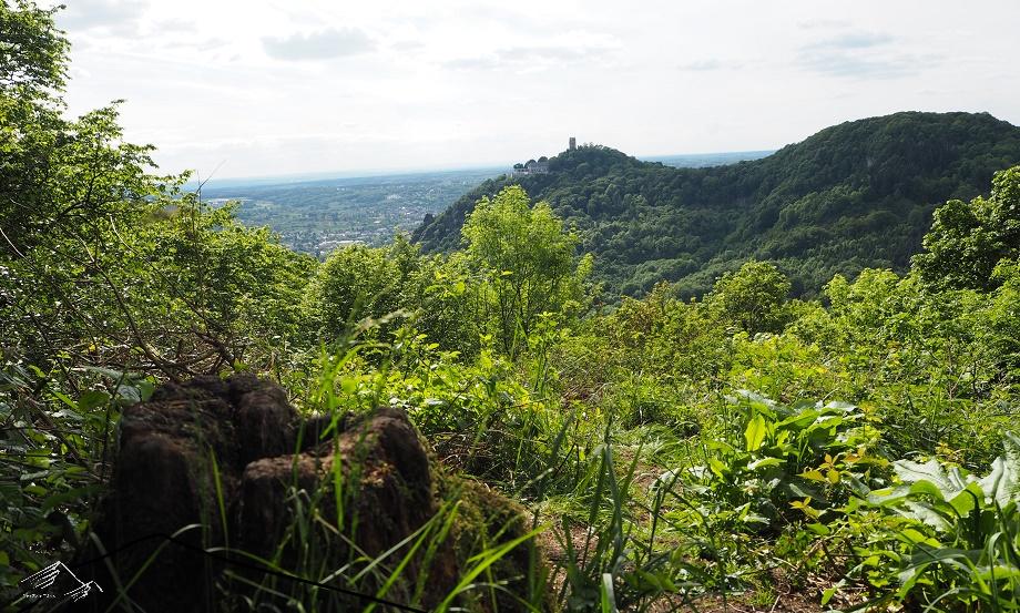 Siebengebirge: Aussicht vom Breiberg auf den Drachenfels