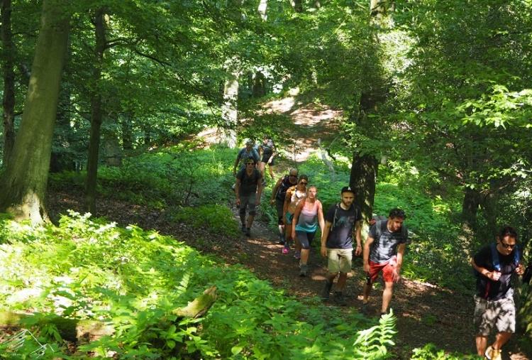 Gruppenwanderung Siebengebirge Breiberg
