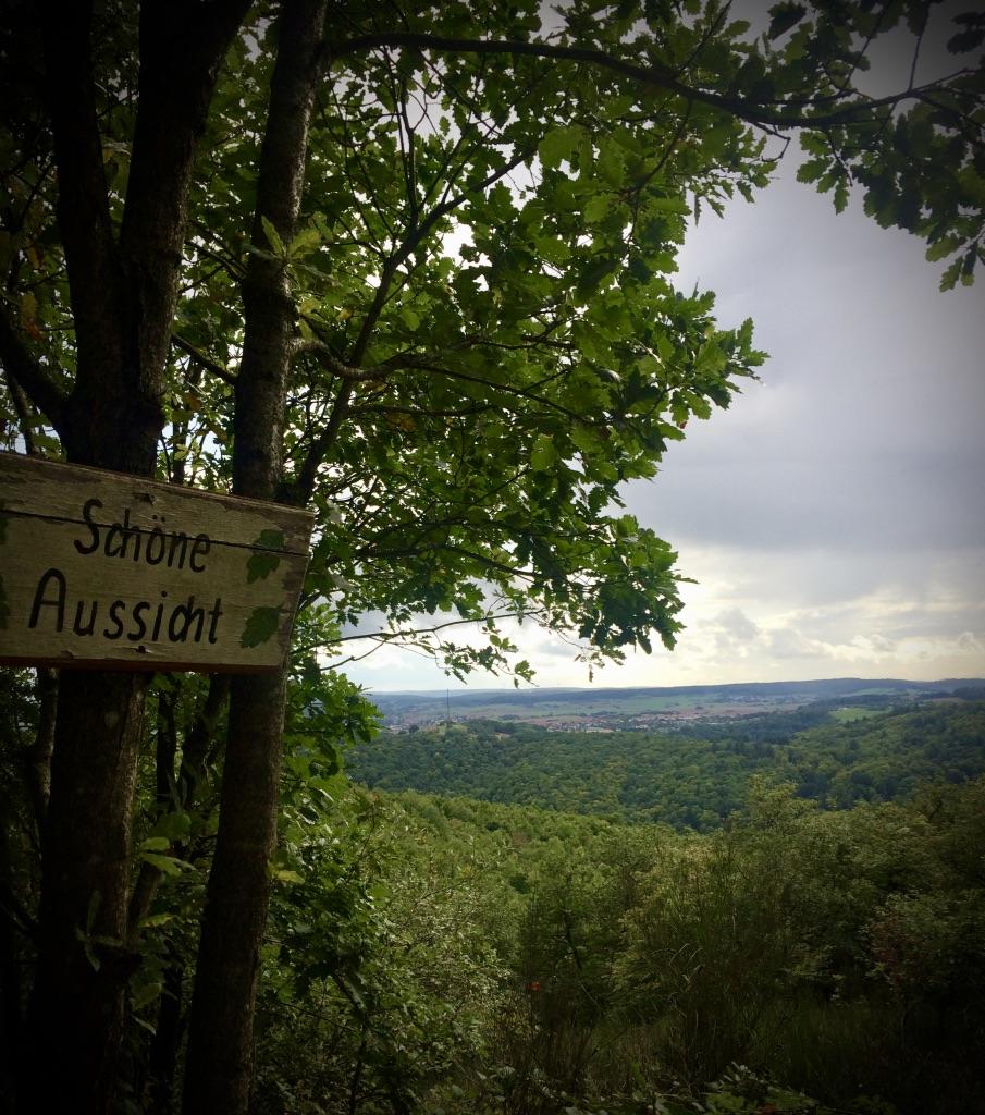 Schöne Aussicht auf dem Pfälzer Höhenweg