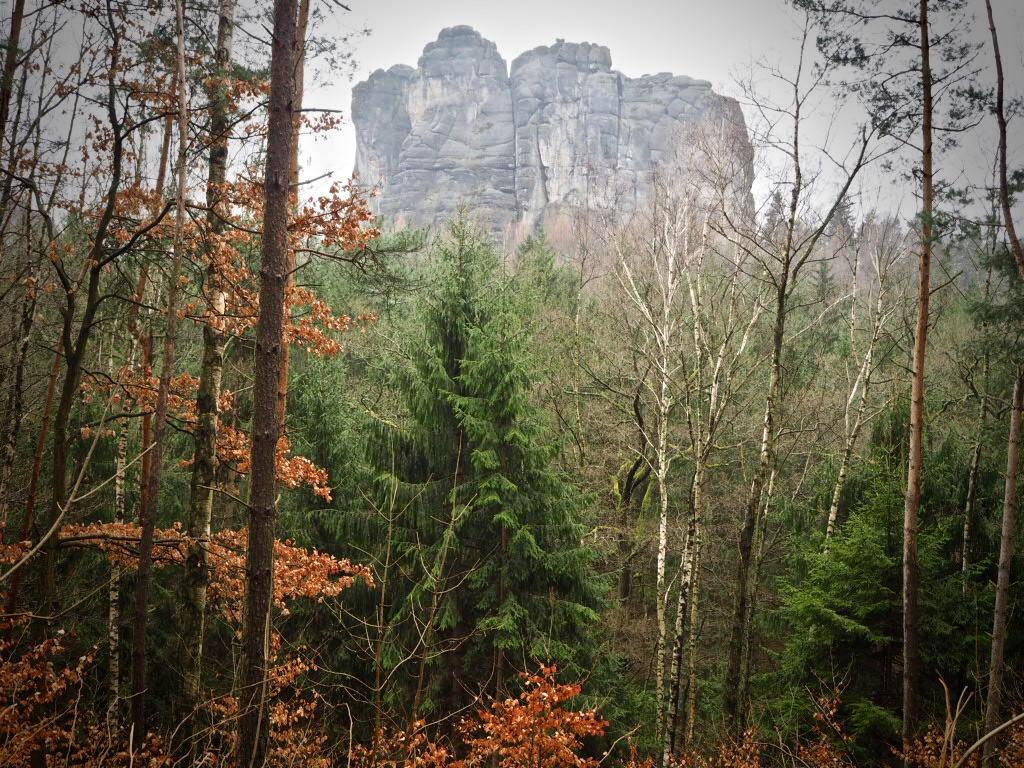Malerweg Etappe 4: Elbsansteingebirge am Wegesrand.