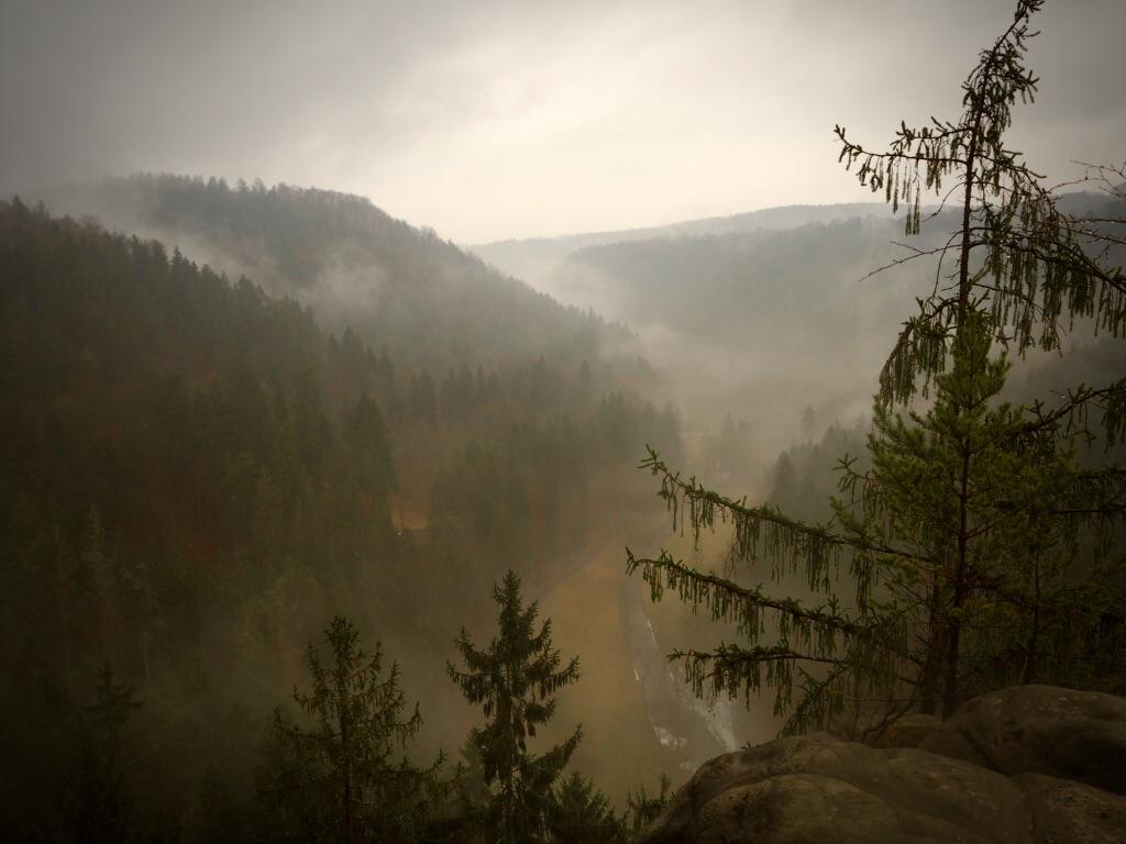 Mystische Stimmung in der Sächsischen Schweiz