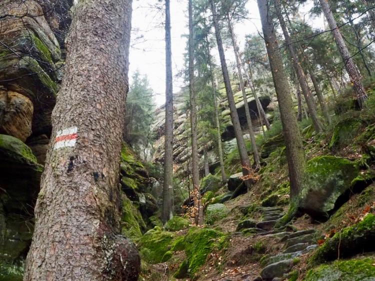 Dorfbachklamm, Malerweg, Sächsische Schweiz