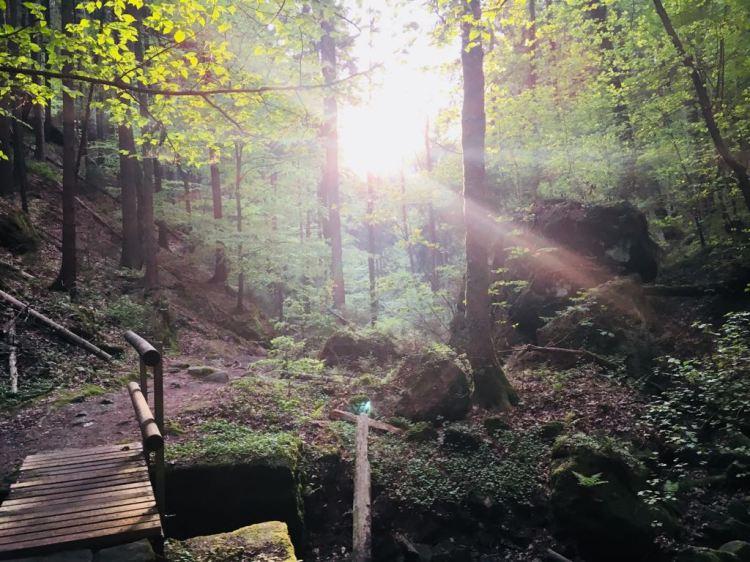 Malerweg bei Sonnenschein
