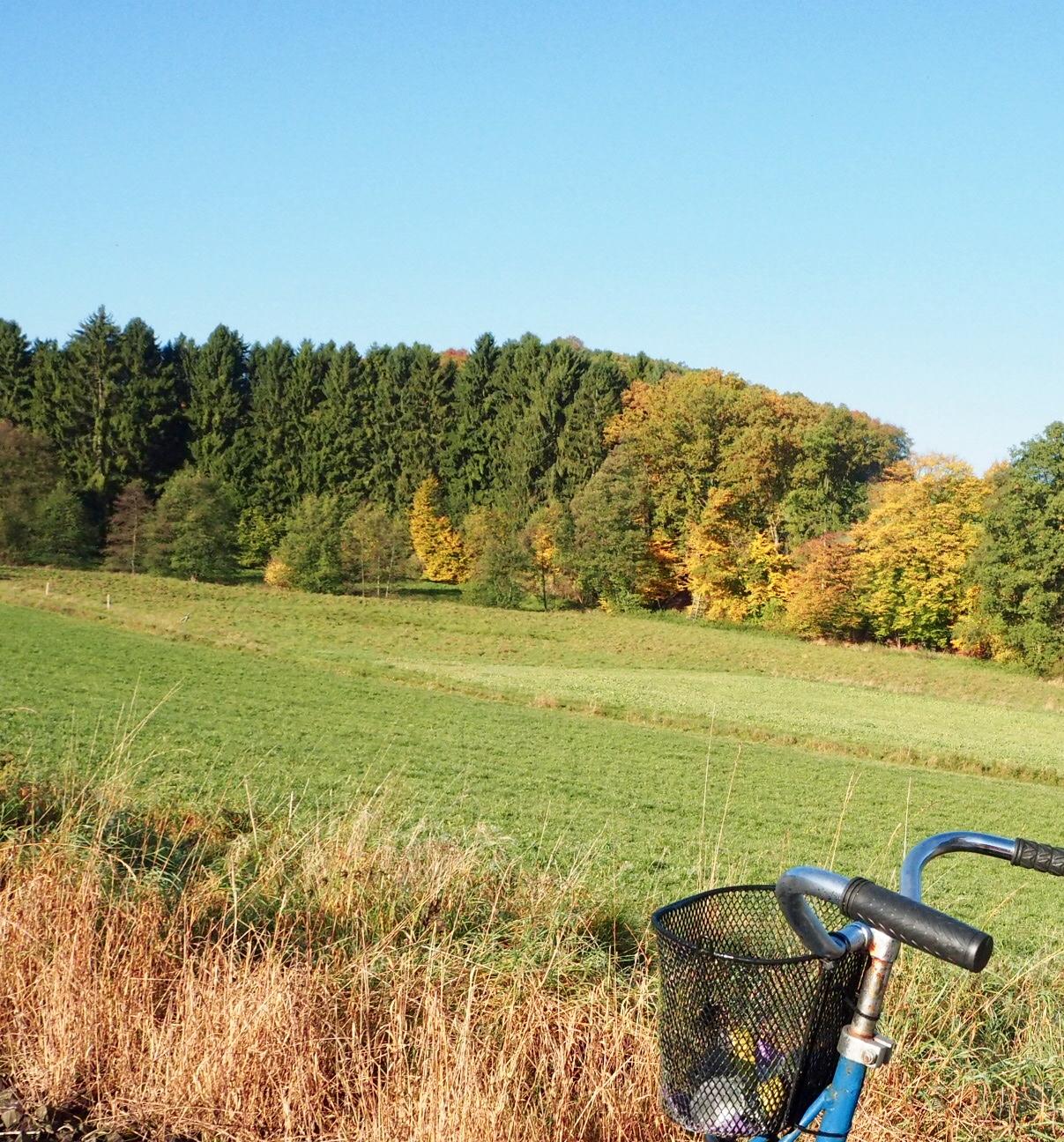 Draisinenfahrt durchs Sauerland
