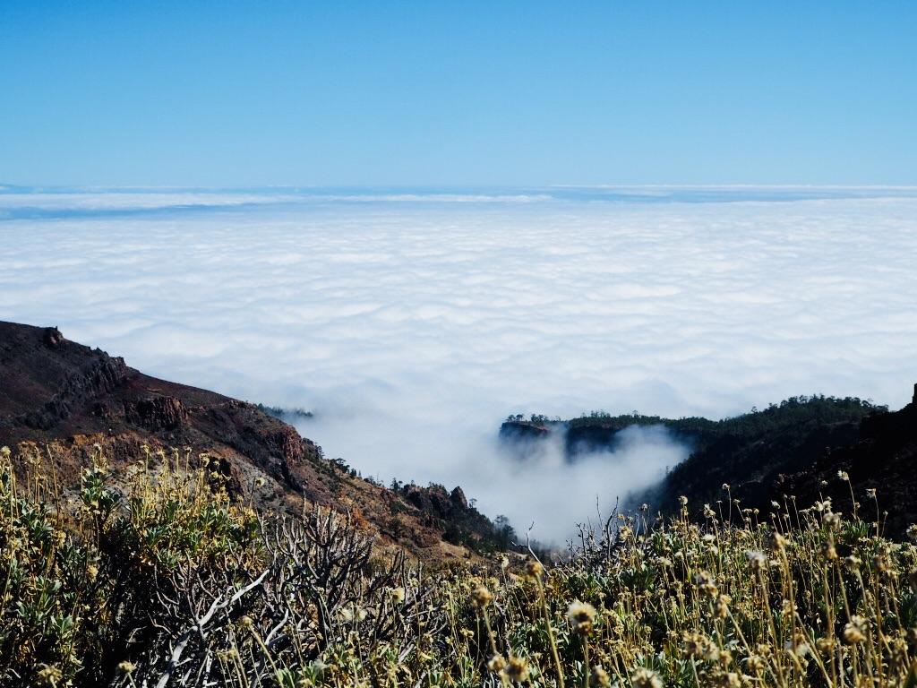 Über den Wolken im Nationalpark El Teide