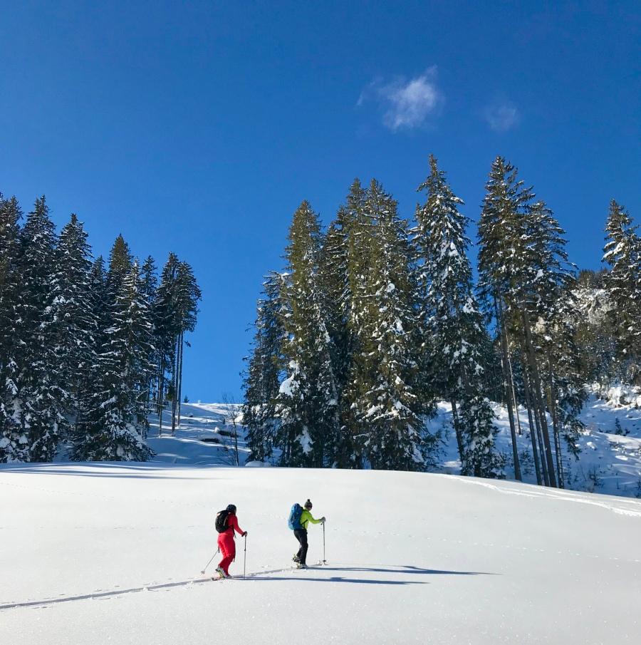 Skitour in Großarl, dem Tal der Skitouren: Letzte Meter Aufstieg